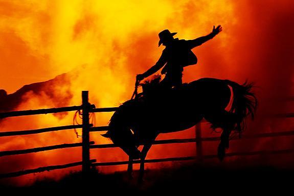 Cowboy #380, 2004