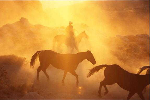 Cowboy #258, 2001