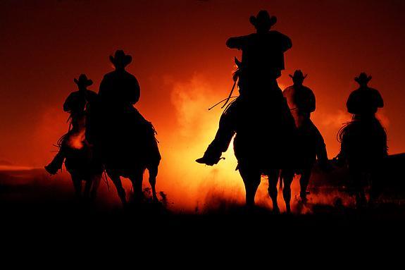 Cowboy #206, 2001
