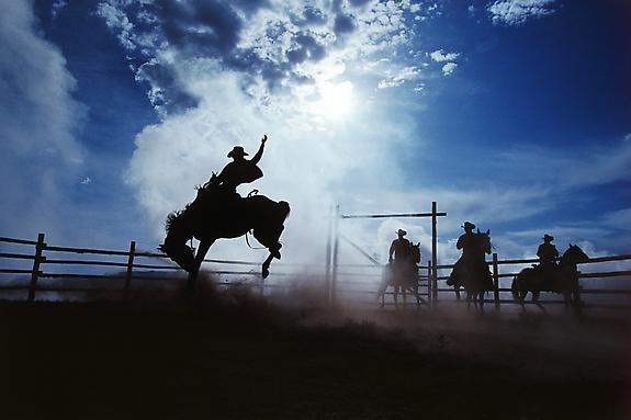 Cowboy #208, 2000