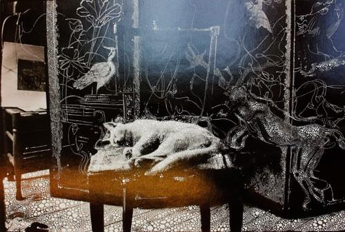 Sebastiaan Bremer Little Cat in the Studio, 2011