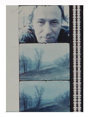 Jonas Mekas Myself, Rhinebeck, 1978