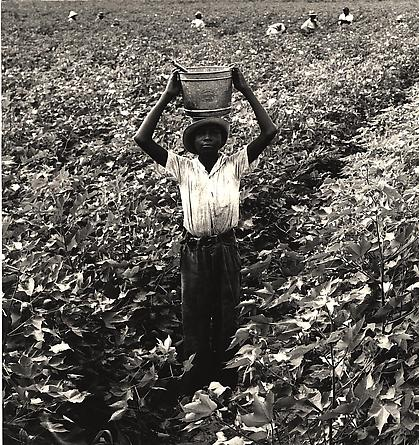 Water Boy, Mississippi Delta, 1938