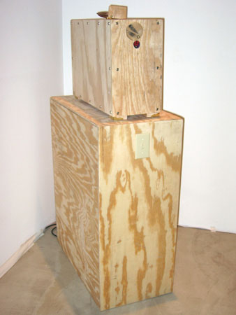 """Closet #22"", 2004 Plywood, acrylic, adhesive, found objects, blacklight, copper nails, etc..."