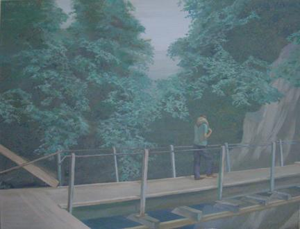 PETER BUSCH Schlucht II 2006 Acrylic on canvas 43 x 51 inches