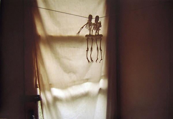Untitled, 2009 Photograph 13.5 x 20 inches