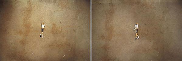 Untitled, 2009 Photograph Diptych, 13.5 x 20 inches, 13.5 x 40 inches overall