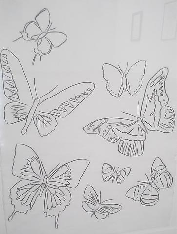 Vanishing Animals: Butterflies, 1986 Graphite on HMP paper 31 3/4 x 23 3/4 inches