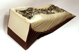 Brian Dettmer: Altered Books - Standard American