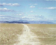 Doug Hall - Highway 447, Near Gerlach, Nevada (Looking East)