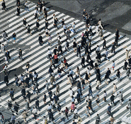 Doug Hall - Crosswalk, Shinjuku (Elevated View)