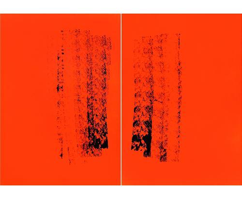 Idiot 2005 acrylic on canvas 230 x 325 cm
