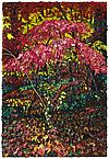 Pink Trees 2008 oil on wood panel 91.5 x 61 cm