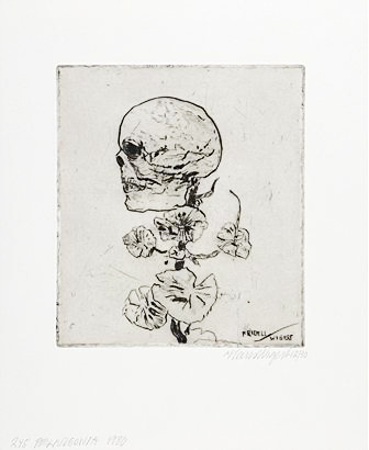 Pelargonia drypoint engraving 36 x 29.5 cm