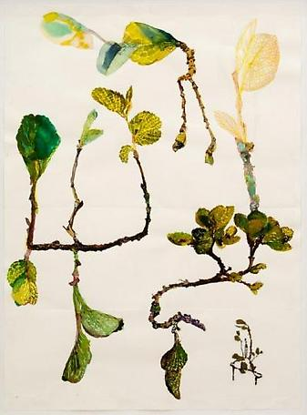 Study of leaves 2011 watercolour on paper and pressed plats 56 x 76 cm