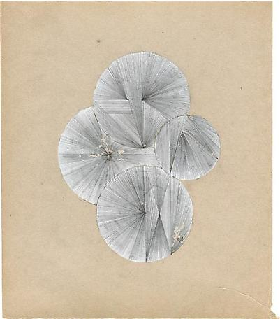 Untitled  2013 white-out and pencil on found paper 19,5 x 23 cm