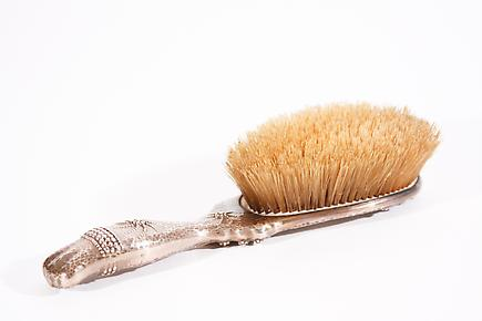 Whiting Co. &lt;br&gt; Sterling Silver Brush 1