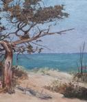 Louis Comfort Tiffany <br> <i>Seascape</i>