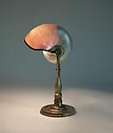 Tiffany Studios <br> Nautilus Shell Desk Lamp