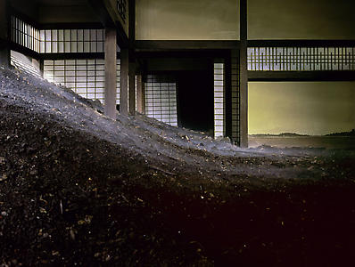 Minka With Dirt and Fog, 2003  C print mounted to plexiglass