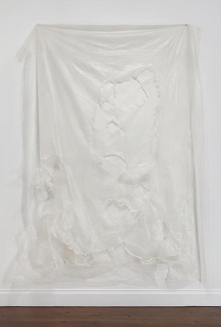 <i>Untitled</i>, 2007 plastic 128 x 89 inches