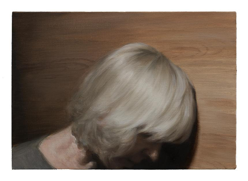 <i>Panel</i>, 2012<br> Oil on linen<br> 13 ¾ x 19 ¾ inches (35 x 50 cm)<br>  Photo credit: Fredrik Nilsen
