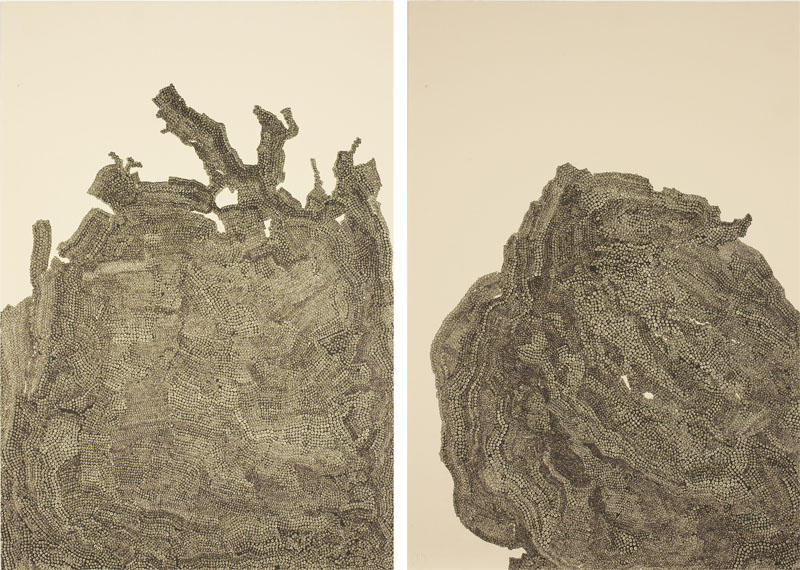 <i>Analogous Mountain (State III)</i> 2008 hand printed lithograph 16 1/2 x 11 3/8 inches (41.9 x 28.9 cm) 1/14