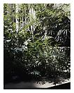 Luisa Lambri <i>Untitled (Isabella Stewart Gardner Museum, #24)</i>, 2008 Laserchrome Print Edition of 5 and 1 artist proof 29.53 x 23.15 inches (75 x 58.8 cm)