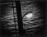 Daido Moriyama Hokkaido, 1978 Vintage black and white print  8 5/8 x 11 1/8 inches C18671