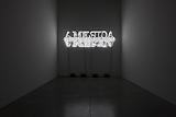 <i>Glenn Ligon: Neon</i> Installation view Luhring Augustine, 2012
