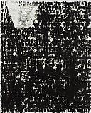 Glenn Ligon