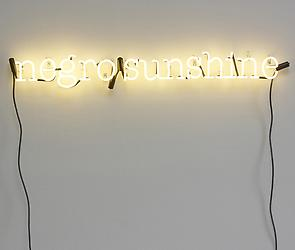 "Glenn Ligon in ""Rauschenberg: Collecting & Connecting"""