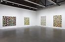Philip Taaffe Recent Work May 3 – June 15, 2013 Installation view Luhring Augustine
