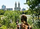 Janet Cardiff <i>Her Long Black Hair</i>, 2004 Audio Walk with photographs, 46 minutes Curated by Tom Eccles for the Public Art Fund (June 17 – September 13). Central Park, New York.