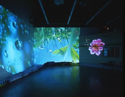 Pipilotti Rist