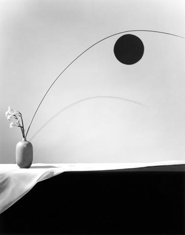<i>Flower</i>, 1983