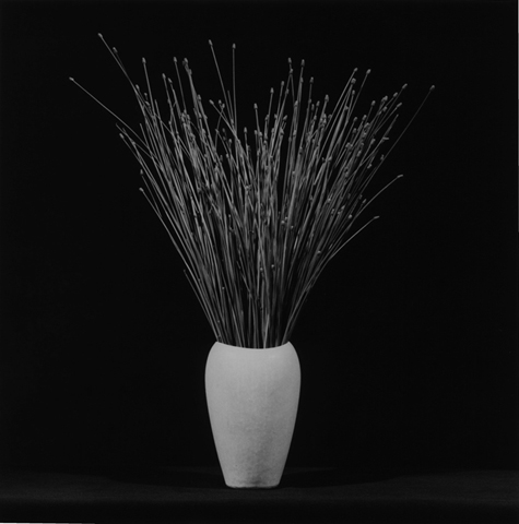 &lt;i&gt;Flower&lt;/i&gt;, 1983