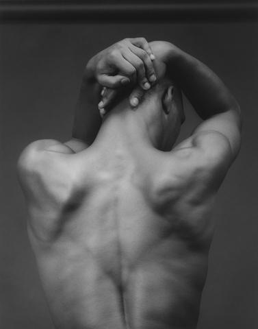 <i>Michael Roth</i>, 1983