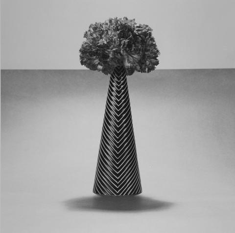 <i>Carnation<i/>, 1984
