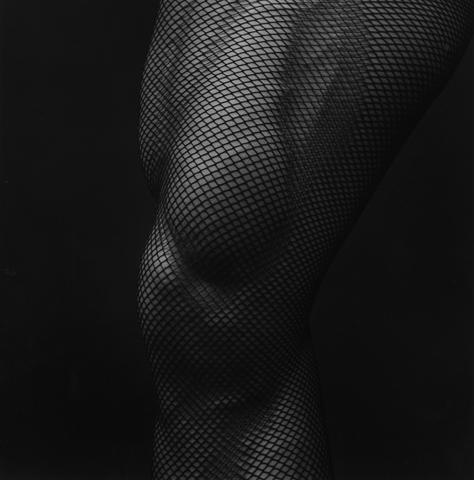 <i>Leg</i>, 1983