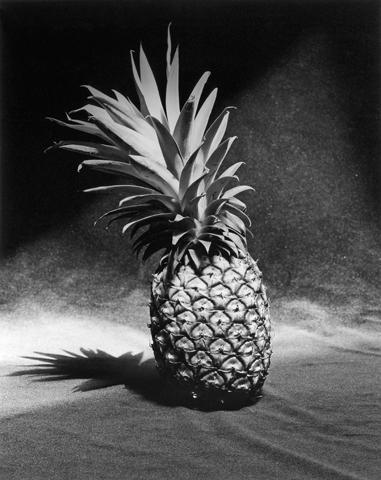 <i>Pineapple</i>, 1985