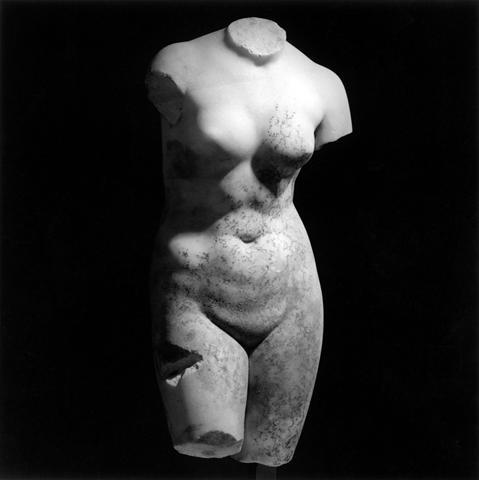 <i>Female Torso</i>, 1978