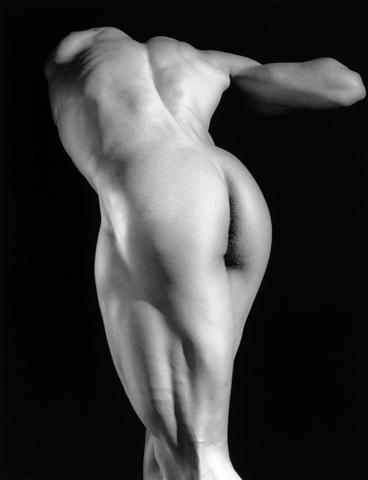 <i>Michael Reed<i/>, 1987