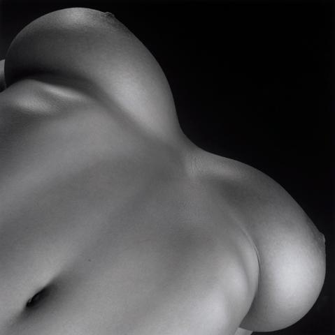<i>Lisa Marie/Breasts</i>, 1987