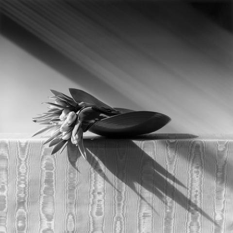 <i>Tulips</i>, 1988