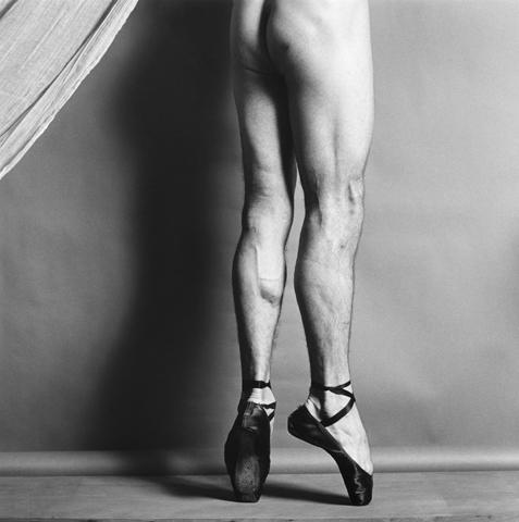 <i>Phillip</i>, 1979