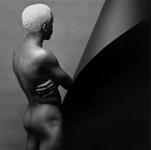 <i>Leigh Lee</i>, 1980