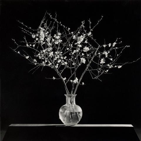 <i>Flowers</i>, 1986