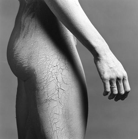 <i>Lisa Lyon<i/>, 1981