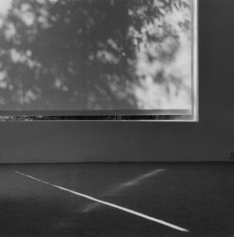 <i>Texas Gallery</i>, 1980